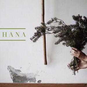 La Vita Yoga - Sadhana
